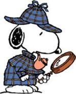 Snoopy Detective