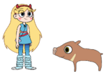 Star meets Collared Peccary