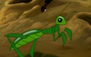 TLK Mantis