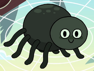 Spider in turn and learn