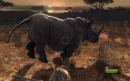 Cabela's Rhino