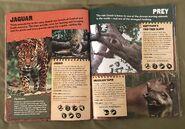 Predator VS Prey (15)