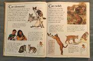 The Kingfisher First Animal Encyclopedia (13)