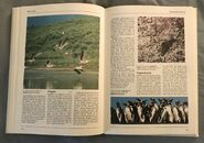 The Kingfisher Illustrated Encyclopedia of Animals (116)