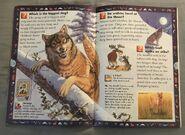 Wild Cats and Other Dangerous Predators (11)