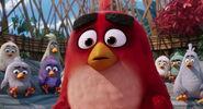 Angry-birds-disneyscreencaps.com-1038