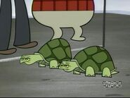 PPG Turtles