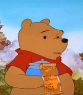 Winnie the Pooh in Pooh's Grand Adventure The Search for Christopher Robin