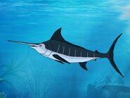 Rileys Adventures Swordfish