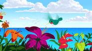 Aloha-scooby-doo-movie-screencaps.com-24