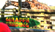 Giraffe, Reticulated (Super Mario Logan)