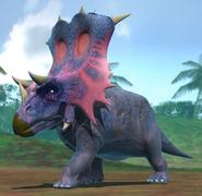Chasmosaurus dbwc