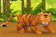 LTWR Sumatran Tiger