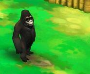 Mountain-gorilla-zoo-2-animal-park