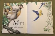 The A to Z Book of Wild Animals (12)