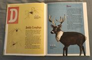 The Dictionary of Ordinary Extraordinary Animals (11)