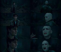 Voldemort kills harry potter