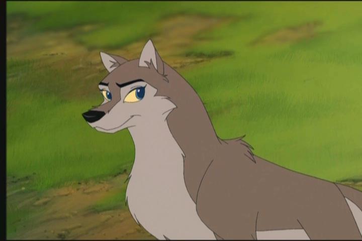 Balto  Female Dogs