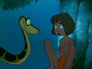 Kaa: yes, mancub...please, go to sleep...please go to sleep...