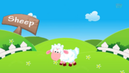 Kids TV Sheep