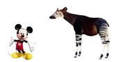 Mickey Okapi