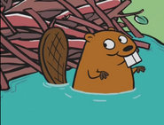 PiTBWW Beaver