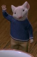 Stuart hands up