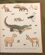 8- An Animal Alphabet (1)