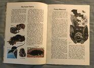 A Golden Exploring Earth Book of Animals (3)