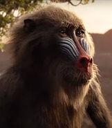Rafiki in The Lion King (2019)