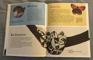 The Dictionary of Ordinary Extraordinary Animals (7)