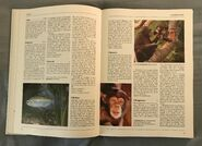 The Kingfisher Illustrated Encyclopedia of Animals (34)