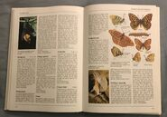 The Kingfisher Illustrated Encyclopedia of Animals (56)