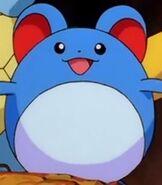 Marill in the Pokemon Shorts