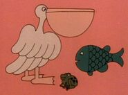 3-pelican-fish-frog-fmafafe