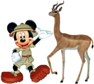 Mickey meets gerenuk