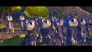 A bugs life 9