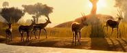 Planet Zoo Thomson's Gazelle