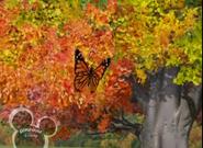 Little Einsteins Butterfly