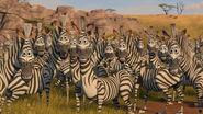 Madagascar2-disneyscreencaps.com-2810