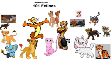 101 Felines