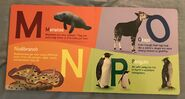 ABC Animals (American Museum of Natural History) (5)