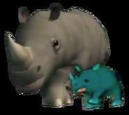 Cwoc rhinos