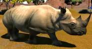 Eastern-black-rhinoceros-zootycoon3