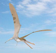 220px-Cearadactylus