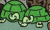 DL Galapagos Tortoises