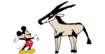 MM Arabian Oryx