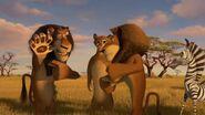Madagascar2-disneyscreencaps.com-9402