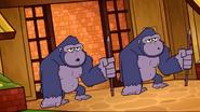 TTGVSPPG Gorillas