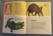 The Dictionary of Ordinary Extraordinary Animals (1)